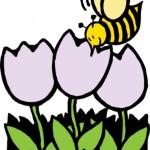 Kā pievilināt taureņus un bites, lai tie dzīvotu tavā dārzā?